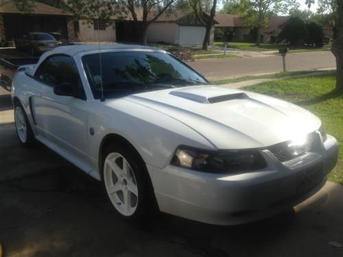 Mustang Electron Top Convertible Top White (01-04)