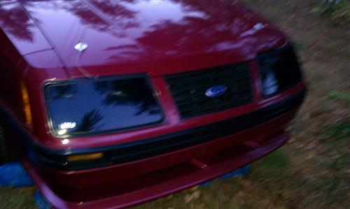 Mustang Smoked Headlight Covers (83-84)