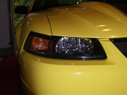 Mustang SVE Factory Tinted Headlight Kit (01-04)
