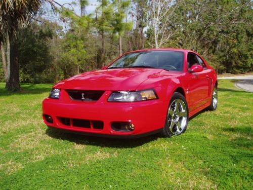 2001-04 Mustang Factory Tinted Headlight Kit