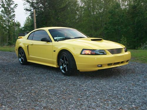 Mustang Factory Tinted Headlight Kit (01-04)