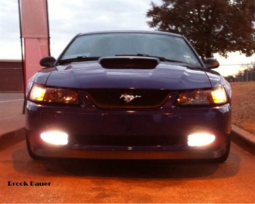 Mustang Ultrawhite Fog Light Bulb (94-04)