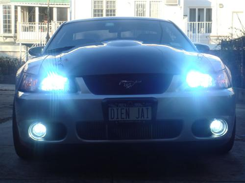 Mustang Cobra Fog Light & Bezel Kit (03-04)