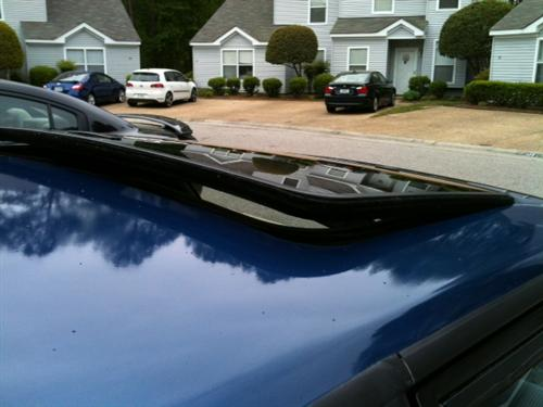 Mustang Sunroof Glass Weatherstrip (79-93)