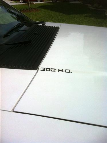 Mustang 302 H.O. Hood Scoop Decal Black