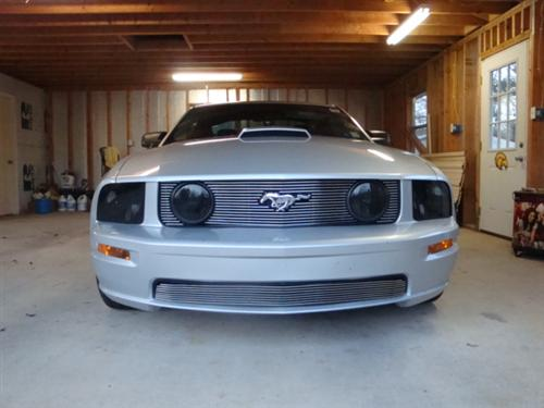 Mustang Headlight Pair Smoked  (05-09)