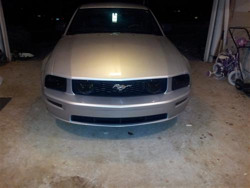 Mustang Blackout Starter Kit (05-09)